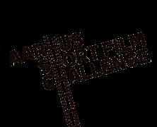 AARHUS CHALLENGE
