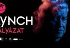 lynch_palyazat-1280x720